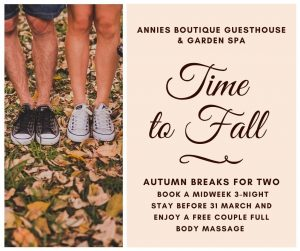 Annies House Fall Promotion